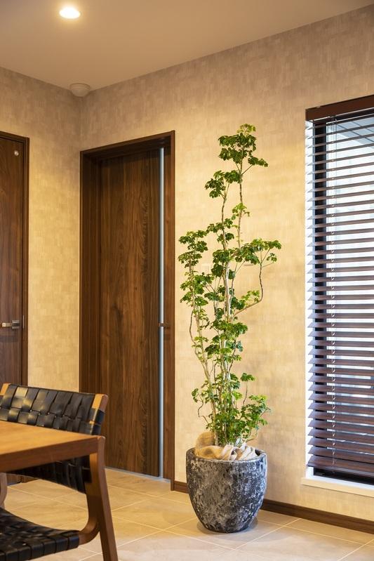 インテリアにグリーン観葉植物を置いてみませんか? Vol.2