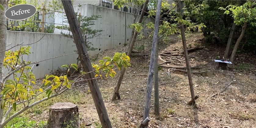お庭,ガーデン