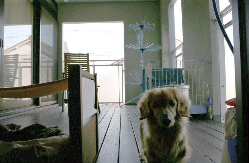 愛犬と暮らす家