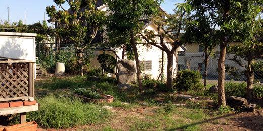 ウッドデッキ、庭、ガーデン